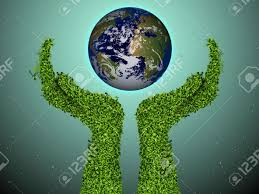1 - ekologia